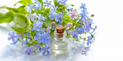 Aromathérapie Vegan